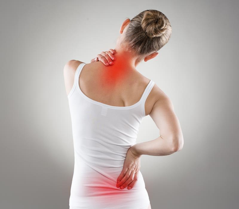 chiropractic services  Raleigh, NC